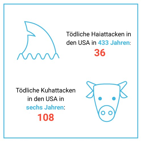 Tödliche Hai- vs. Kuhattacken